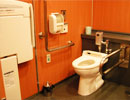 Wheelchair accessible toilets