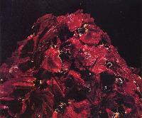 中川幸夫 《魔の山》1989年 カラープリント